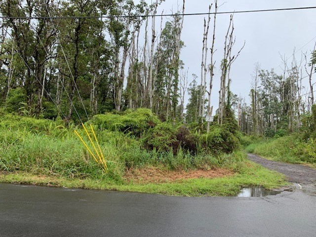 ROAD 9 (KOLOA MAOLI), MOUNTAIN VIEW, HI 96771