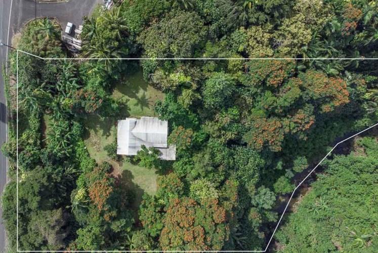 28-160 HONOMU RD, HONOMU, HI 96728