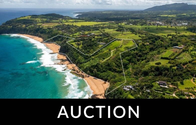 2884-A KAUAPEA RD, Kilauea, HI 96754