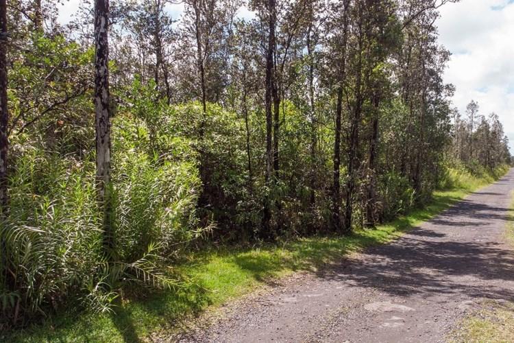 OPEAPEA RD (ROAD 7), MOUNTAIN VIEW, HI 96771