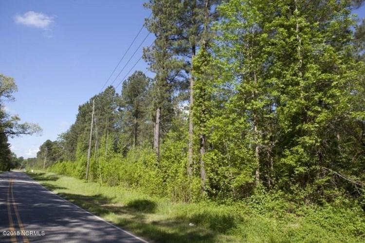 0 Taylors Gin Road, Castalia, NC 27816