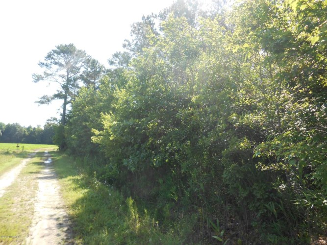 0 Cooper Lane, Jamesville, NC 27846