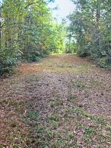 0 Off Mill Creek Road, Pollocksville, NC 28573