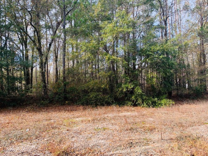 Lot 6 Ivanhoe Road, Ivanhoe, NC 28447