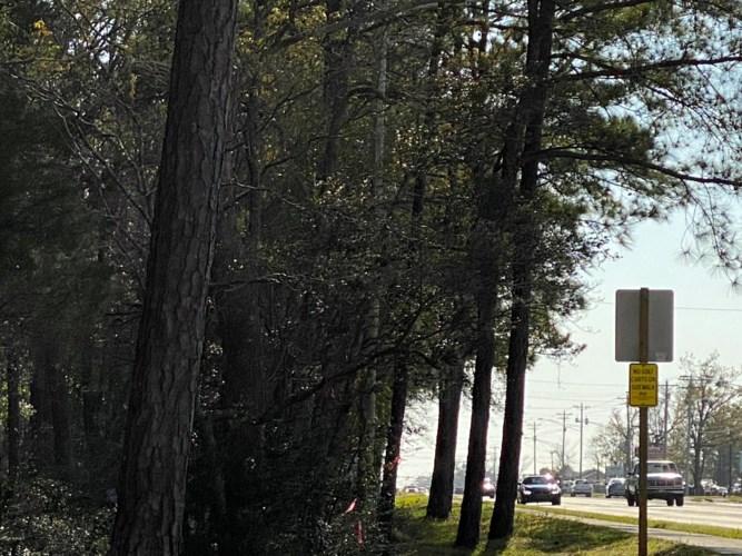 1140 Cedar Point Boulevard, Cedar Point, NC 28584
