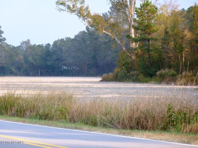 249 Acres Old Fayetteville Road, Garland, NC 28441