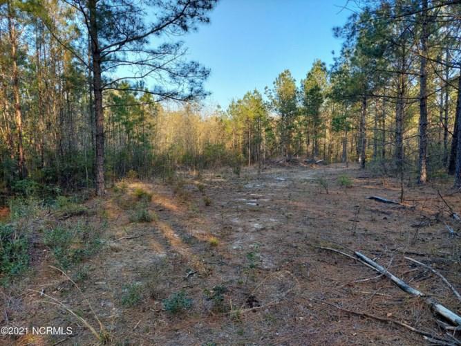 0 Battleground Road, Atkinson, NC 28421