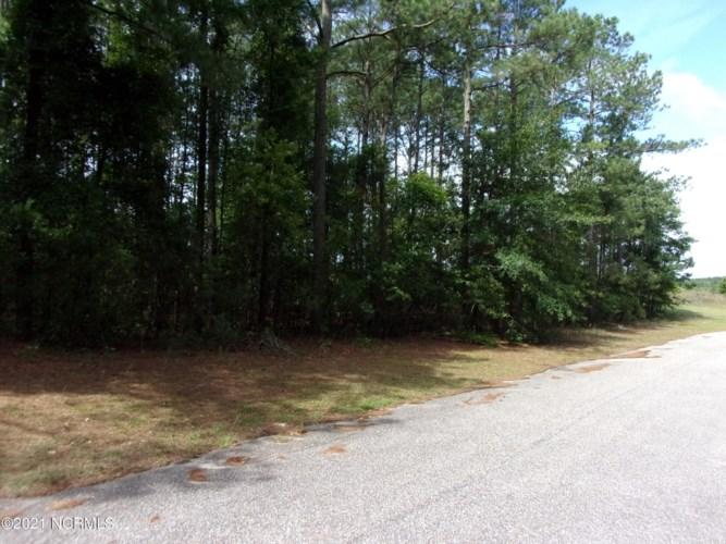 17 Old Tom Morris Road, Garland, NC 28441