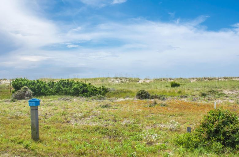 10 Brown Pelican, Bald Head Island, NC 28461
