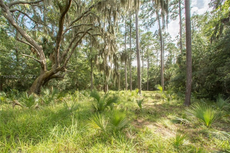 67 Trout Hole Road, Bluffton, SC 29910