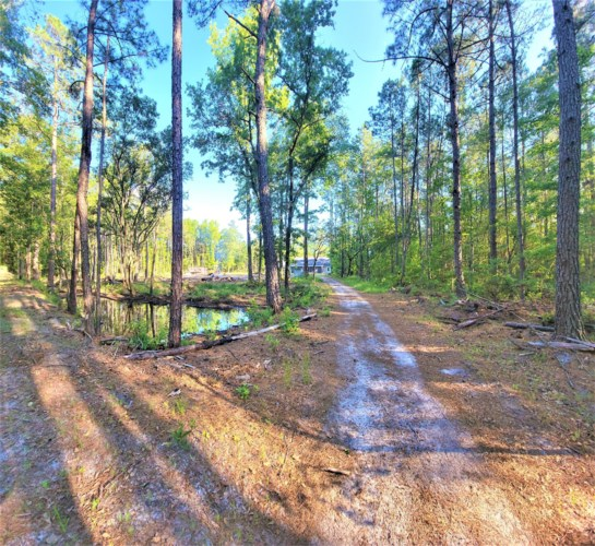 210 Southern Charm Road, Ruffin, SC 29475
