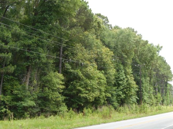 00 Greenpond Highway, Walterboro, SC 29488