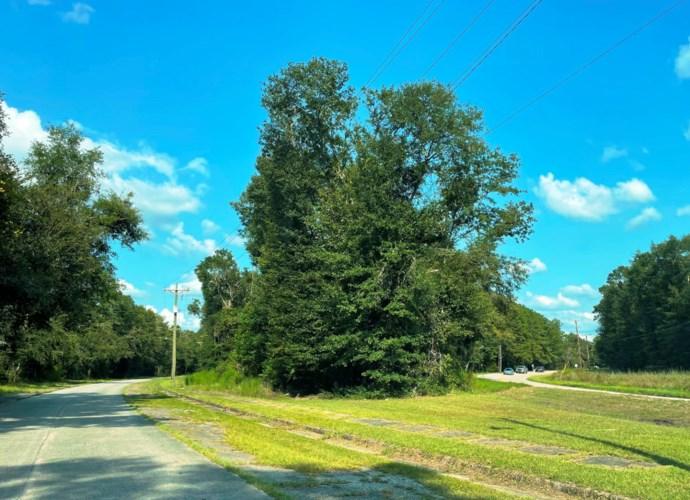 1631 Wichman Street, Walterboro, SC 29488