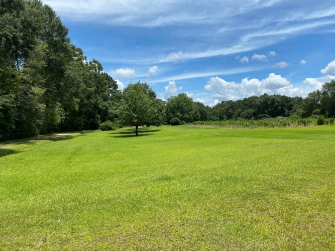 4684 Old Hwy 11, Purvis, MS 39475