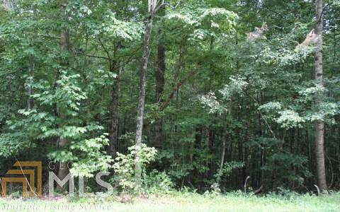 0 Blackberry Mountain Rd, Ellijay, GA 30536