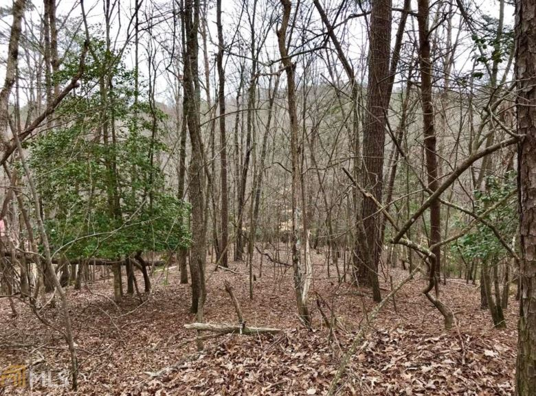 0 Gunite Ct, Ellijay, GA 30540