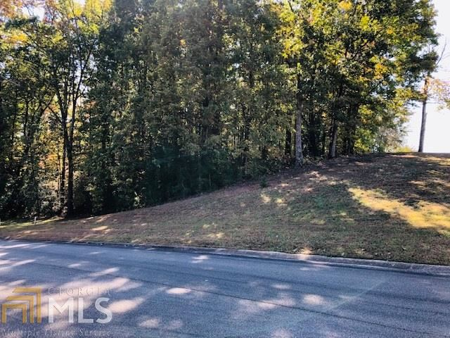 0 The Oaks Dr, Ellijay, GA 30540