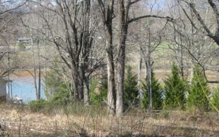LOT28 SNEAKING CREEK, Hayesville, NC 28904
