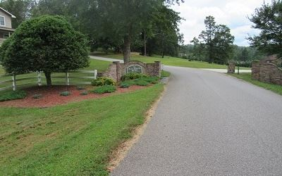 LOT18 BYERS ROAD, Blairsville, GA 30512