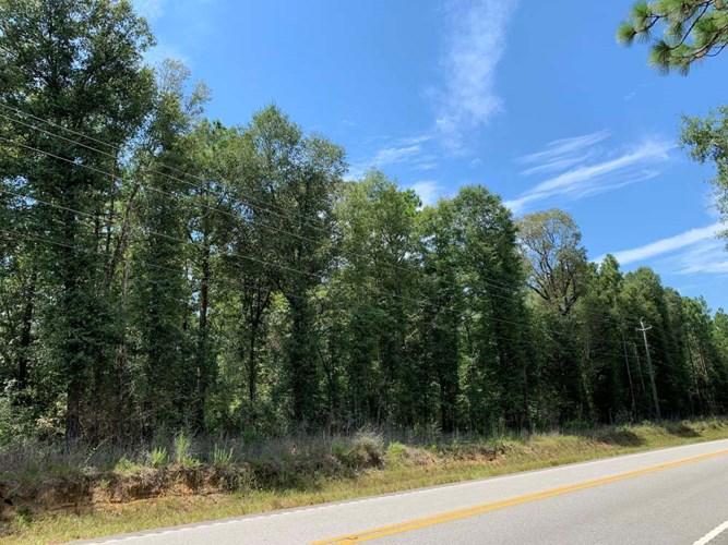 Lott Road Timber & Homesite Tract, Gulfcrest, AL 36521