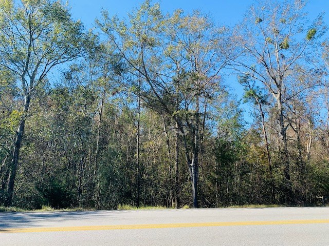 Homesite Tract North Mobile Co., Georgetown, AL 36521