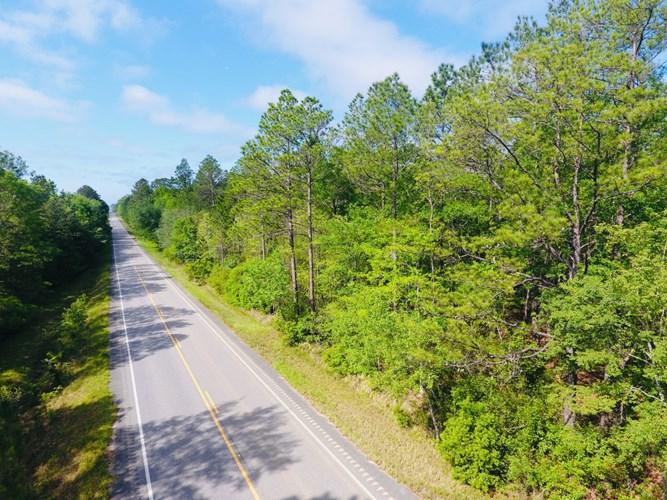 Hwy 17 - 86 Acres, Deer Park, AL 36529