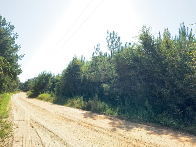 Paul Bayou Road, Malcolm, AL 36556