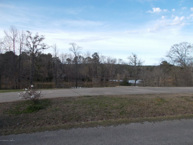 2260  THE NARROWS, Parrish, AL 35580