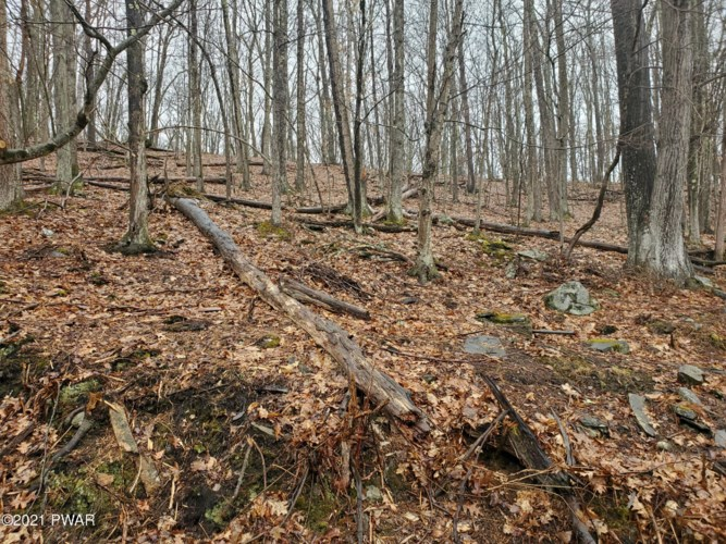 386 Masthope Plank Rd, Lackawaxen, PA 18425