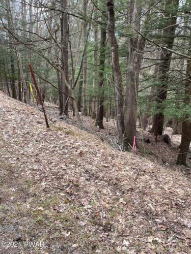 lot 10 Woodledge East Aly, Hawley, PA 18428