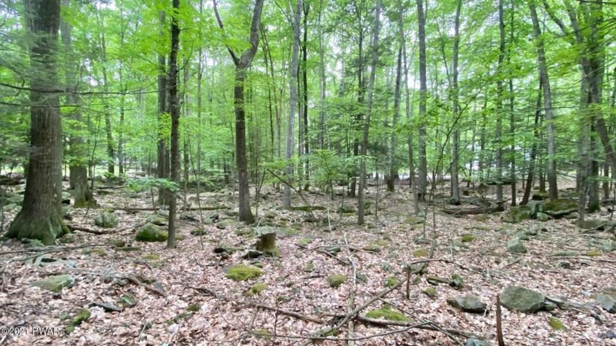 198 & 199 Forest Dr, Lakeville, PA 18438