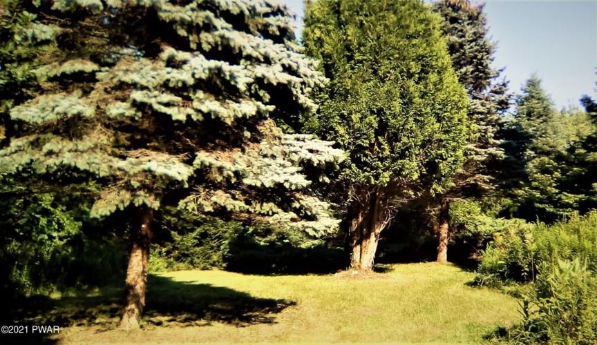 1019 Creek Dr, Prompton, PA 18456