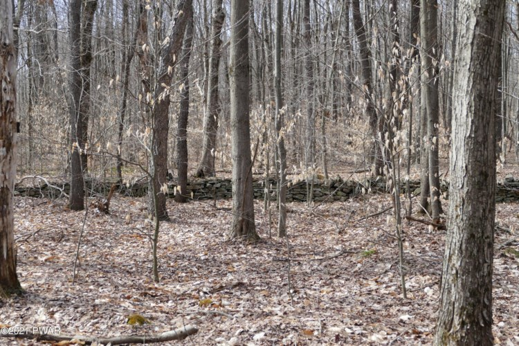 Creek Rd, Union Dale, PA 18470