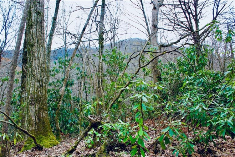 Lot #27 Huckleberry Drive, Maggie Valley, NC 28751