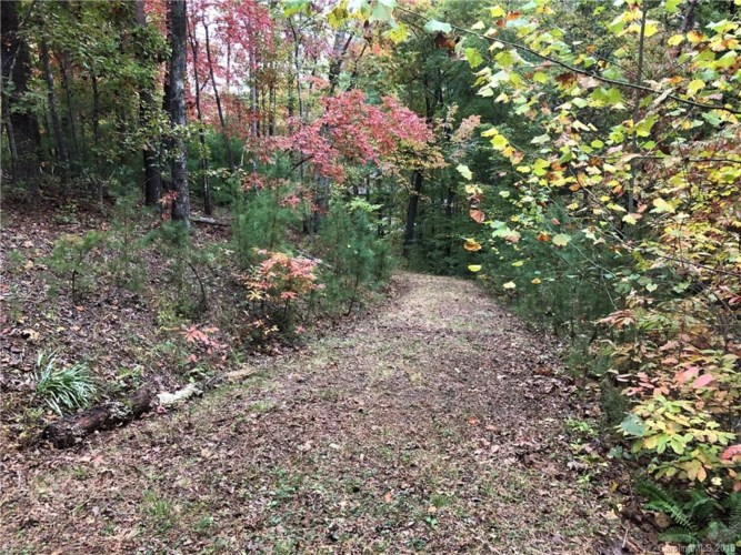 Lot 13 South Pointe Road, Mill Spring, NC 28756
