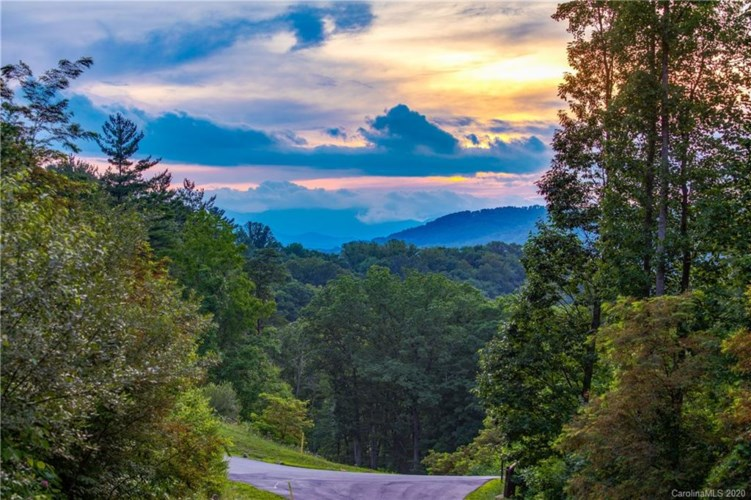 TBD Bartrams Walk Drive #10, Asheville, NC 28804