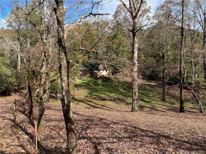 174 Twisted Tree Lane, Horse Shoe, NC 28742