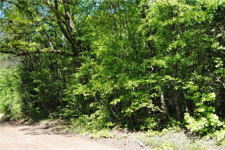 Lot 4 Old Chisolm Road #4, Rock Hill, SC 29732