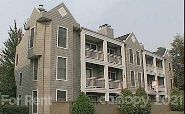 300 S Cedar Street #Unit #7, Charlotte, NC 28202