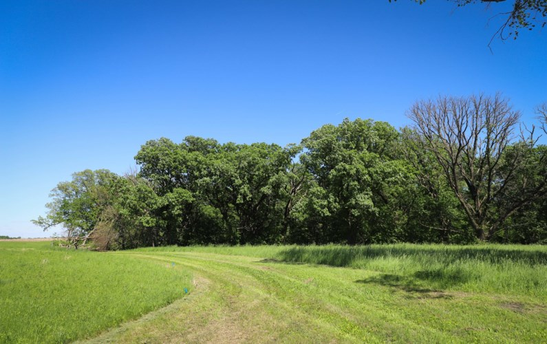 Tunnel Mill Road, Webster City, IA 50595