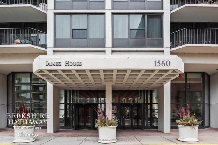 1560 N SANDBURG Terrace #3003, Chicago-Near North Side, IL 60610