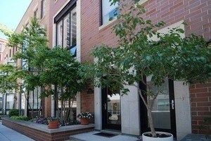 641 W WAYMAN Street #A, Chicago-Near West Side, IL 60661