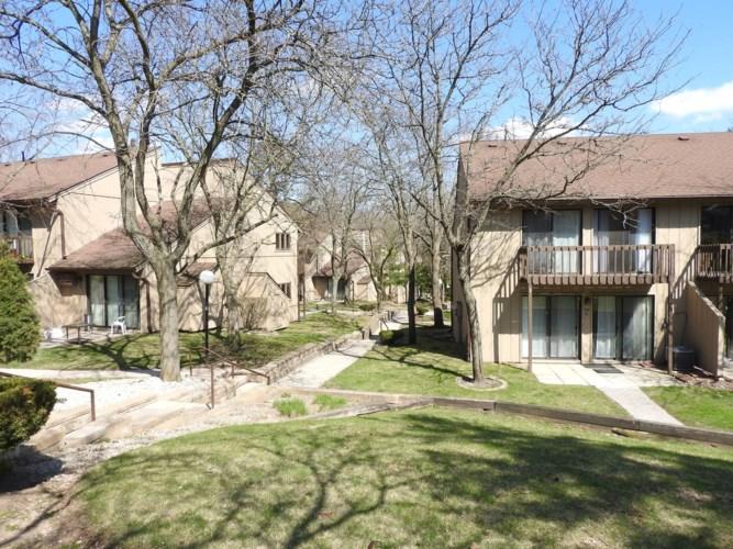 21 Saint Thomas Colony  #1, Fox Lake, IL 60020