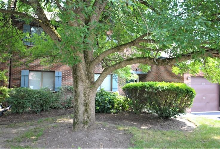 1833 Portsmouth Drive #B, Lisle, IL 60532