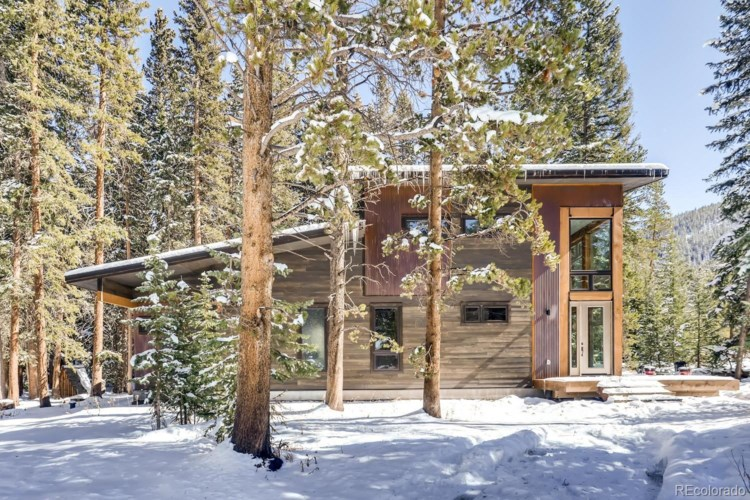 69 Wilderness Drive, Blue River, CO 80424