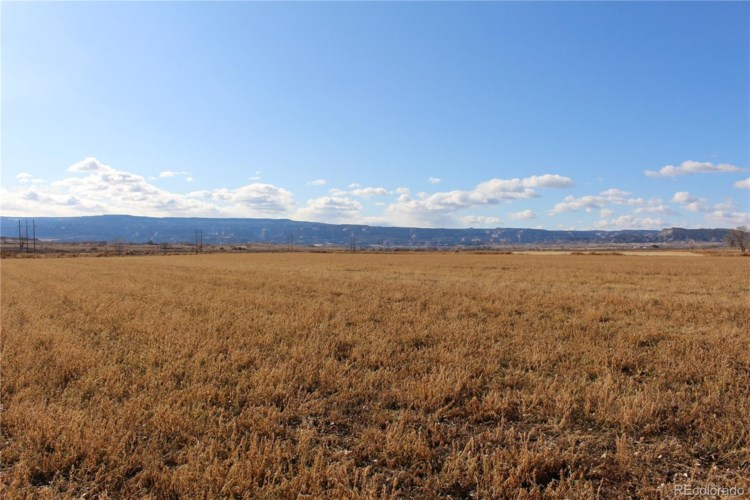 000 O Road, Loma, CO 81524