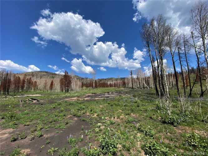 1943 County Road 42, Granby, CO 80446