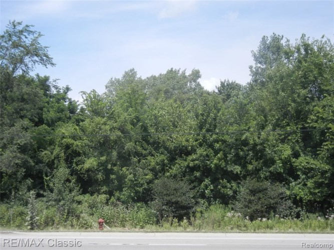 Vacant FORD Road, Canton, MI 48187