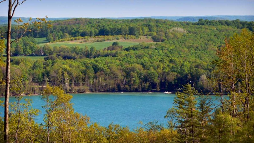 Lot 9 Vistas of Walloon 9, Walloon Lake, MI 49770