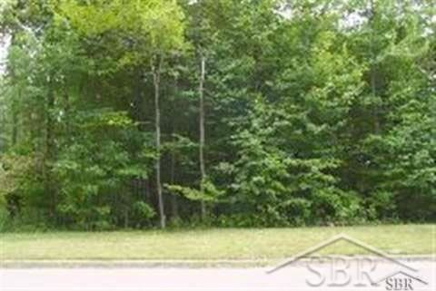BEECH TREE LANE LOT 9, Frankenmuth, MI 48734